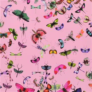 tapeta mariposa 2
