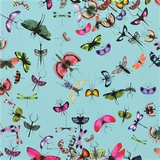 tapeta mariposa