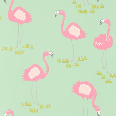 felicity flamingo tapeta seledyn